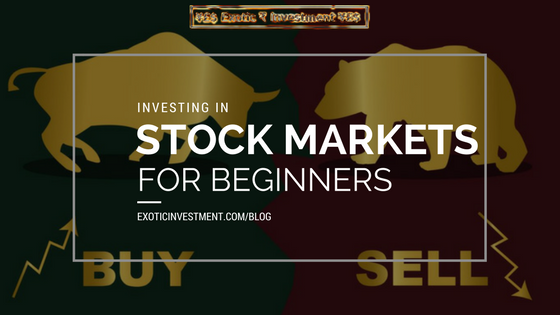 Stock Market Basics for Beginners – Crucial Advice For Anyone Starting to Invest in Stock Market