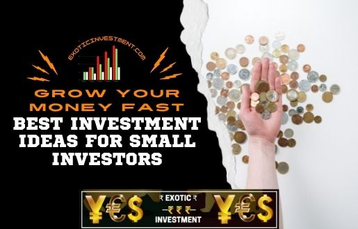 best investment ideas for small investors